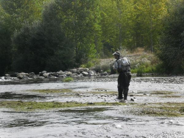 pesca truchas